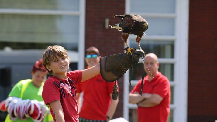 Spectaculaire roofvogel show bij Woutje Brugge Nolina huttenbouw